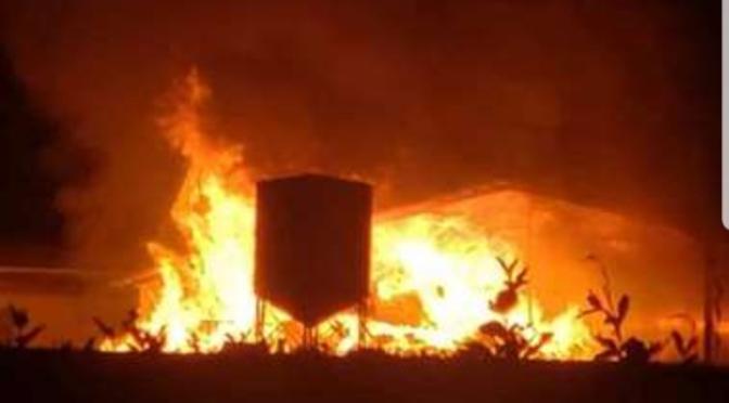 Bomberos atienden incendio de grandes proporciones en Sarapiquí, Costa Rica.